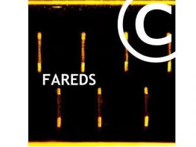 Abmahnung FAREDS Rechtsanwaltsgesellschaft mbH - Urheberrechtsverletzung über Internettauschbörsen