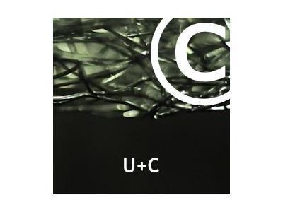 Abmahnung U+C Rechtsanwälte für Malibu Media LLC.