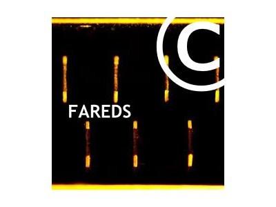 FAREDS – Abmahnung Don Jon wegen Filesharing