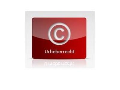 Fotoklau im Internet – Welche Möglichkeiten hat der Rechteinhaber?