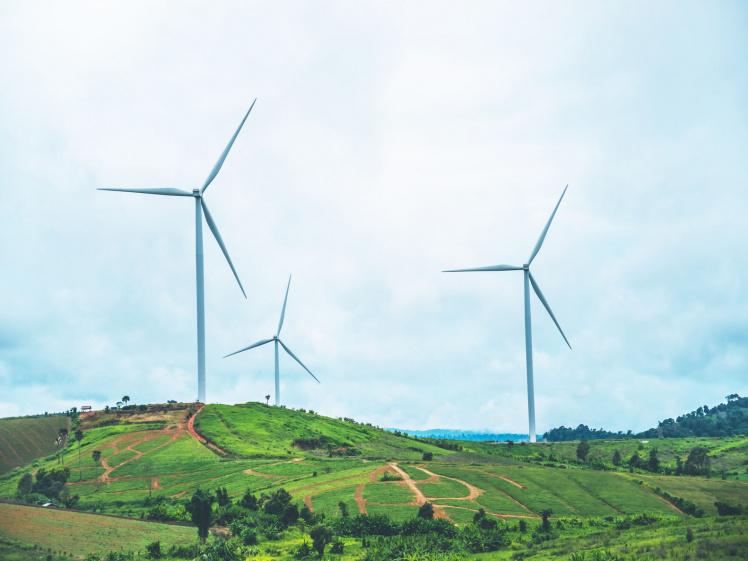 Scheitern ökologische Kapitalanlage Insolvenz UDI Forderungsanmeldung Haftung