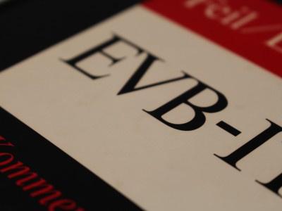 Neue EVB-IT: EVB-IT Service oder EVB-IT Servicevertrag