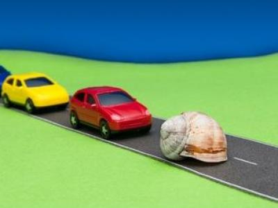 Vorwurf Straßenverkehrsgefährdung: Woran Verurteilungen häufig kranken