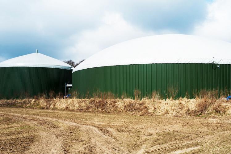 Antidumpingzoll Biodiesel