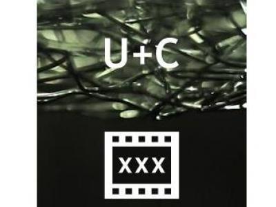 Wehren Sie sich gegen die massenhaften Abmahnungen für Streaming auf www.redtube.com durch U+C Rechtsanwälte - 250 €
