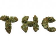 Behörde trägt Beweislast für mehrfachen Cannabiskonsum eines Führerscheininhabers