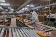 Verbot Werkverträge und Leiharbeit in Fleischindustrie - Fall Tönnies