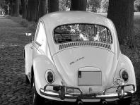 Musterverfahren VW Abgas-Skandal