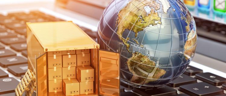 Fachanwalt Internationales Wirtschaftsrecht